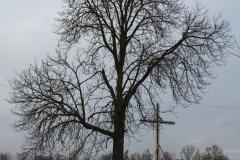 Sierzchowy krzyż nr5 (14)