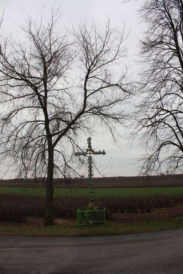 2019-01-17 Stara Rossocha krzyż nr2 (2)