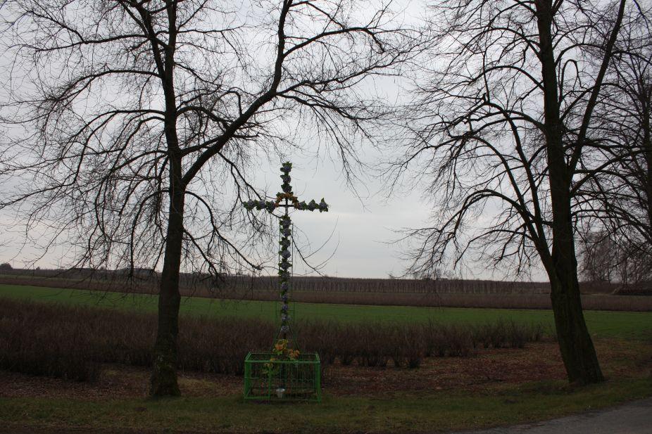 2019-01-17 Stara Rossocha krzyż nr2 (9)