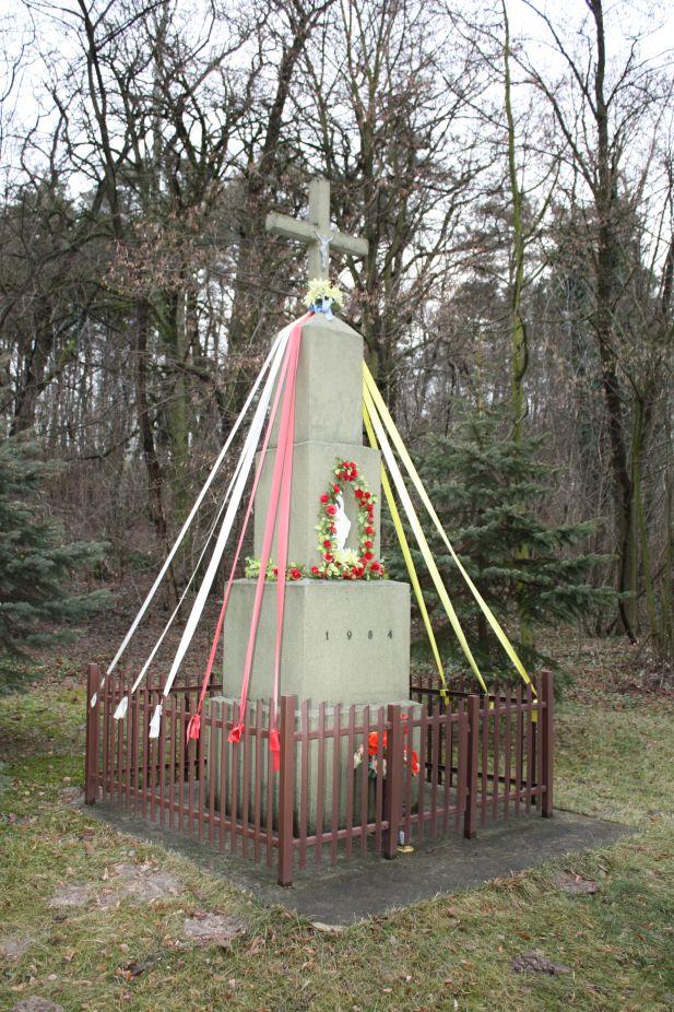 2018-12-31 Brzeziny kapliczka nr1 (6)