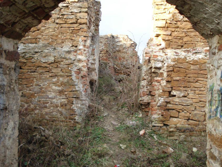 2007-02-06 Inowłódz - ruiny zamku (13)