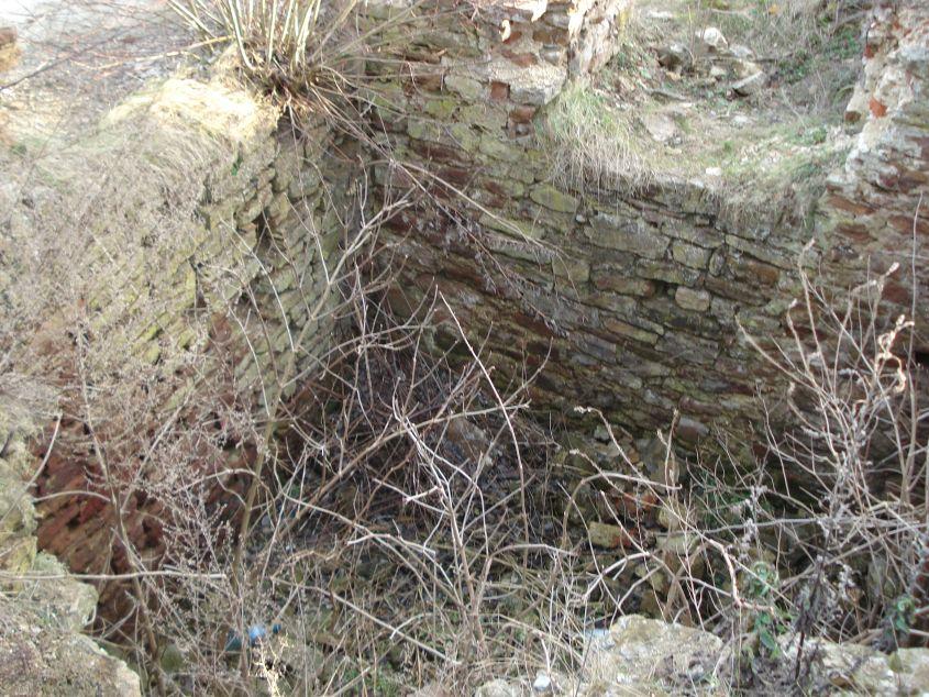 2007-02-06 Inowłódz - ruiny zamku (29)