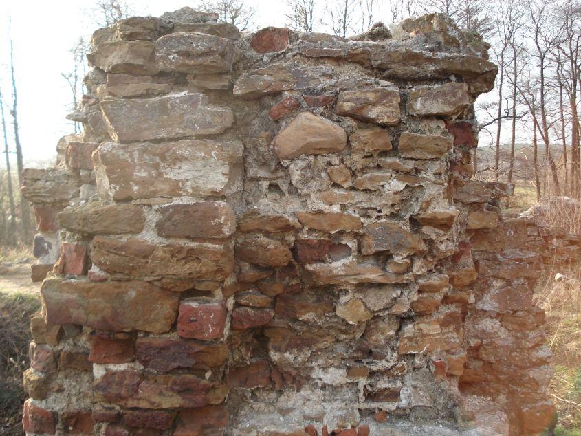 2007-02-06 Inowłódz - ruiny zamku (32)
