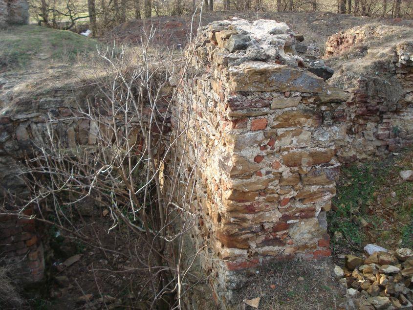 2007-02-06 Inowłódz - ruiny zamku (34)