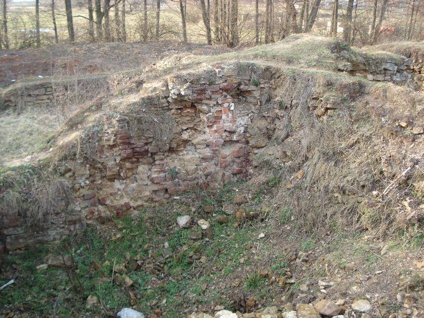 2007-02-06 Inowłódz - ruiny zamku (35)