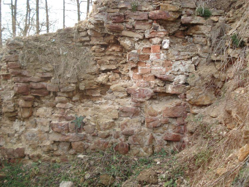 2007-02-06 Inowłódz - ruiny zamku (43)