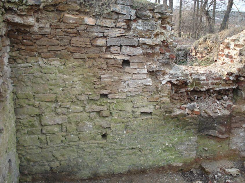 2007-02-06 Inowłódz - ruiny zamku (44)