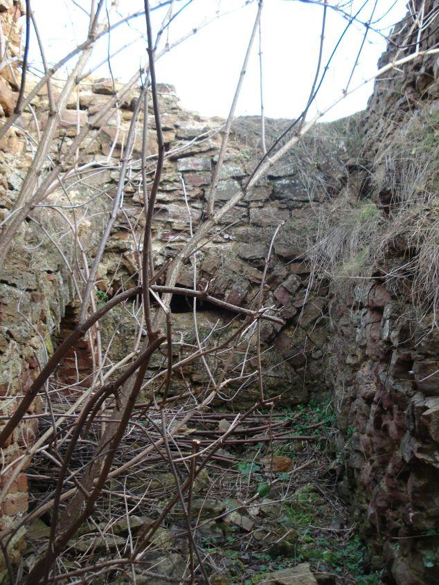 2007-02-06 Inowłódz - ruiny zamku (47)