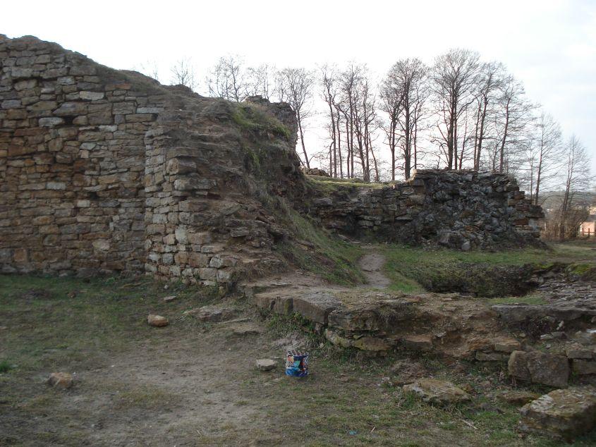 2007-02-06 Inowłódz - ruiny zamku (5)