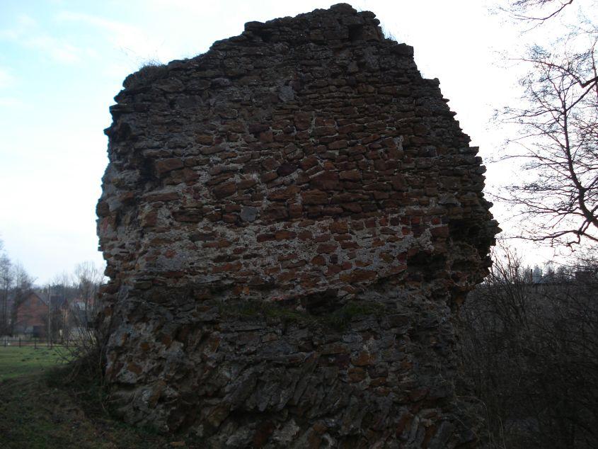 2007-02-06 Inowłódz - ruiny zamku (50)