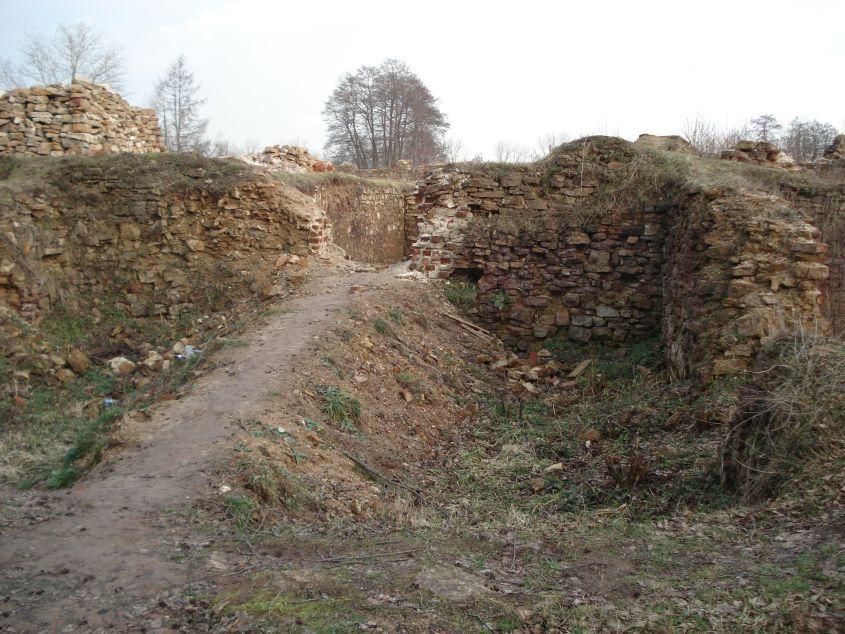 2007-02-06 Inowłódz - ruiny zamku (51)