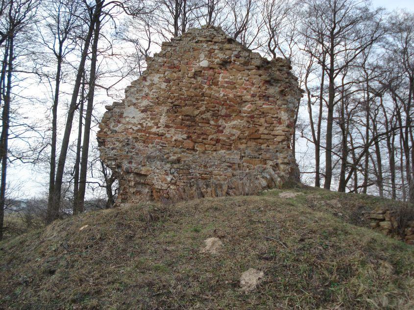 2007-02-06 Inowłódz - ruiny zamku (60)