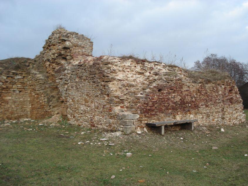 2007-02-06 Inowłódz - ruiny zamku (64)