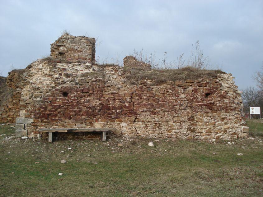 2007-02-06 Inowłódz - ruiny zamku (65)