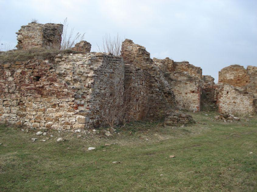 2007-02-06 Inowłódz - ruiny zamku (67)