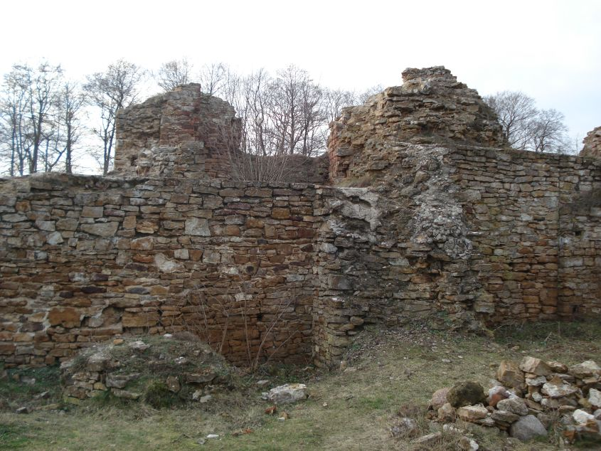 2007-02-06 Inowłódz - ruiny zamku (71)