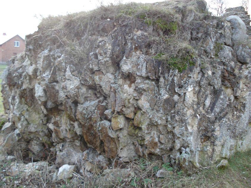 2007-02-06 Inowłódz - ruiny zamku (73)