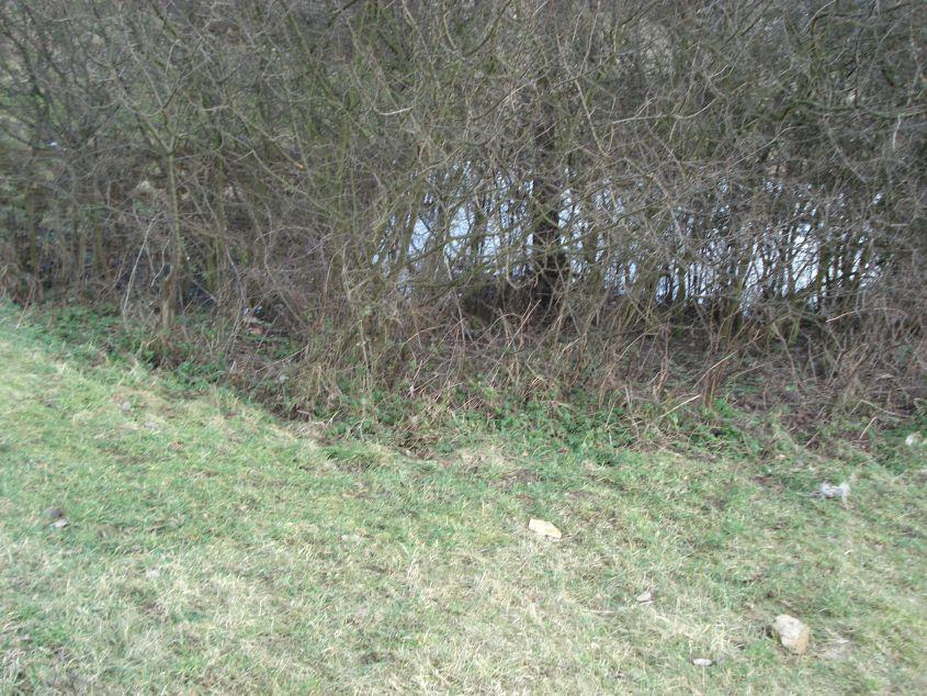 2007-02-06 Inowłódz - ruiny zamku (76)