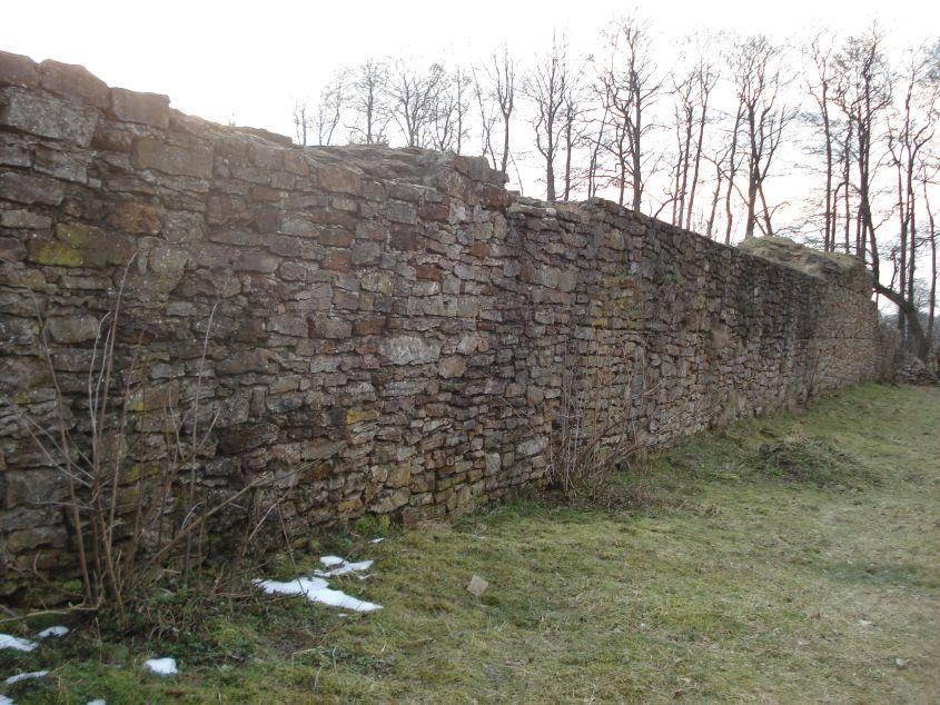 2007-02-06 Inowłódz - ruiny zamku (79)