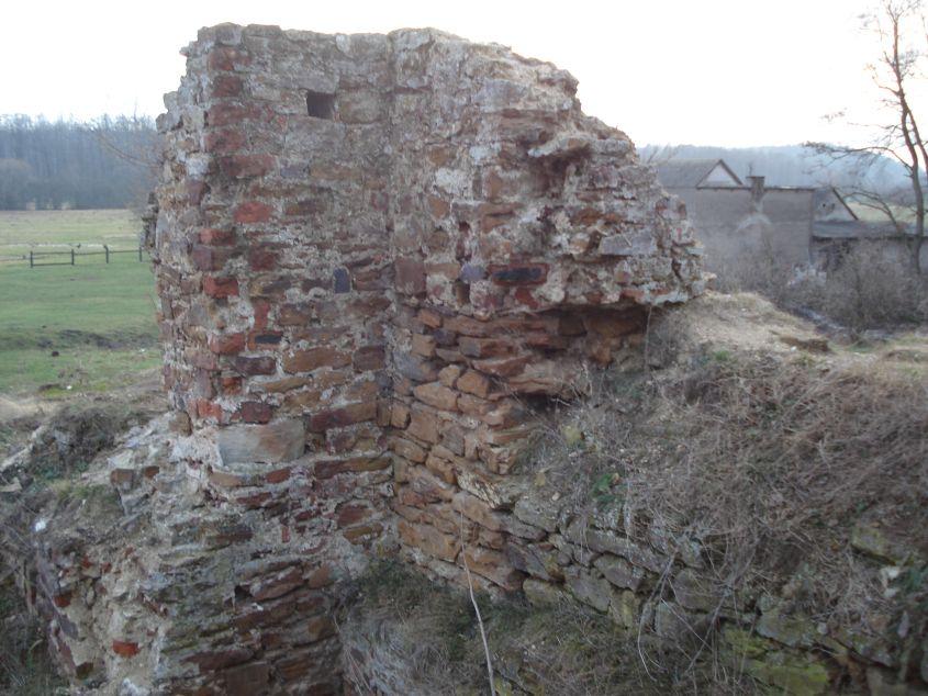 2007-02-06 Inowłódz - ruiny zamku (87)
