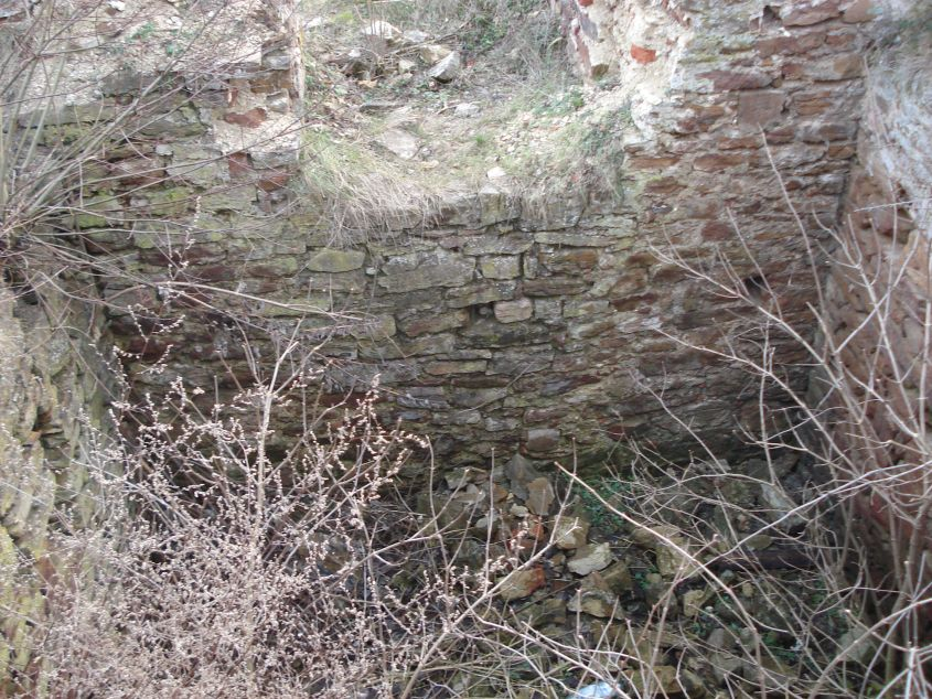 2007-02-06 Inowłódz - ruiny zamku (90)