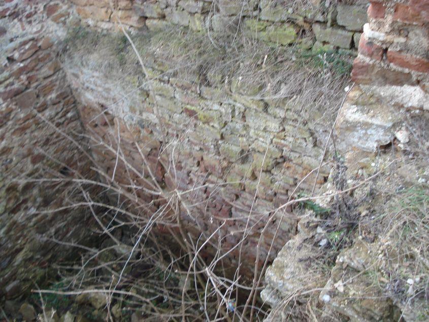 2007-02-06 Inowłódz - ruiny zamku (91)