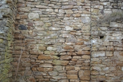 2007-02-06 Inowłódz - ruiny zamku (12)
