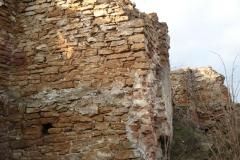 2007-02-06 Inowłódz - ruiny zamku (16)
