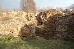 2007-02-06 Inowłódz - ruiny zamku (22)
