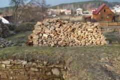 2007-02-06 Inowłódz - ruiny zamku (27)