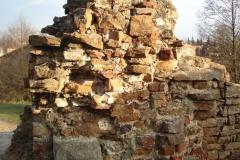 2007-02-06 Inowłódz - ruiny zamku (30)