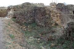 2007-02-06 Inowłódz - ruiny zamku (54)