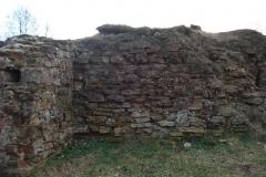 2007-02-06 Inowłódz - ruiny zamku (86)