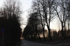 2019-02-16 Stare Byliny krzyż nr1 (10)