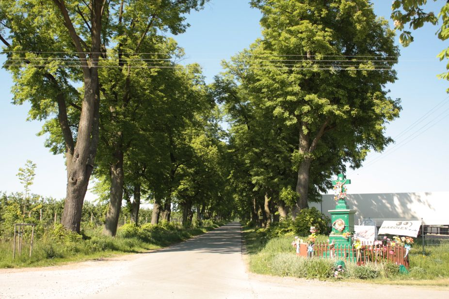 2018-05-06 Stolniki kapliczka nr1 (1)