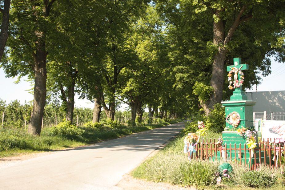 2018-05-06 Stolniki kapliczka nr1 (11)