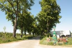 2018-05-06 Stolniki kapliczka nr1 (10)