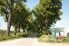 2018-05-06 Stolniki kapliczka nr1 (2)