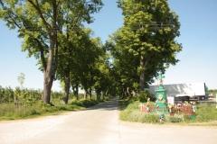2018-05-06 Stolniki kapliczka nr1 (5)