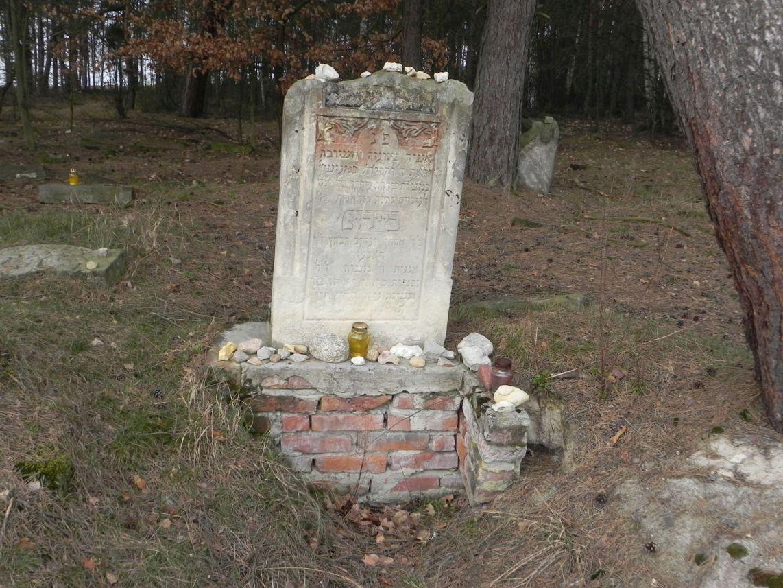 2010-01-21 Inowłódz - cmentarz żydowski (64)