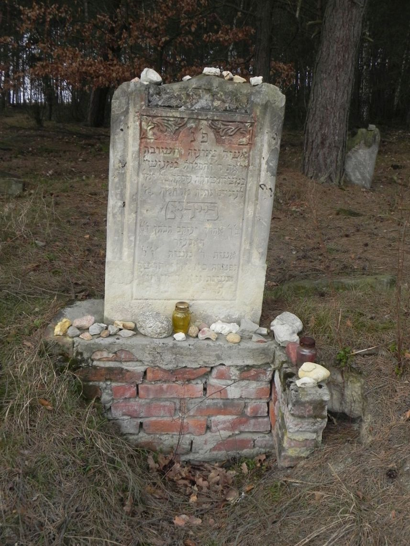 2010-01-21 Inowłódz - cmentarz żydowski (65)