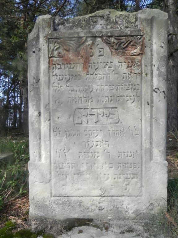 2011-08-07 Inowłódz - cmentarz żydowski (13)