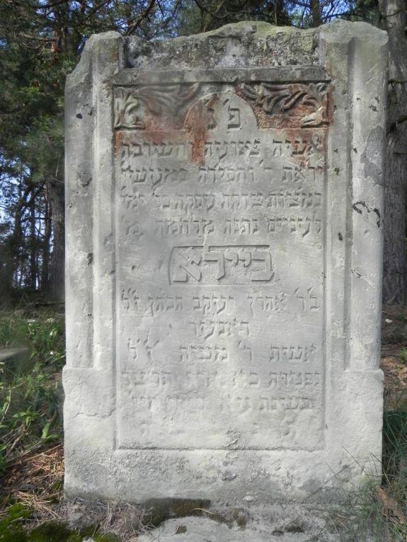 2011-08-07 Inowłódz - cmentarz żydowski (14)