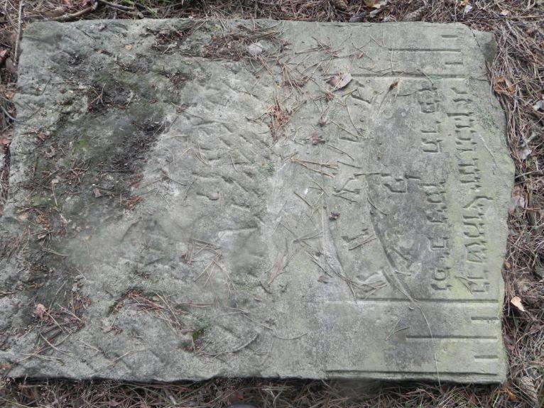 2011-08-07 Inowłódz - cmentarz żydowski (2)