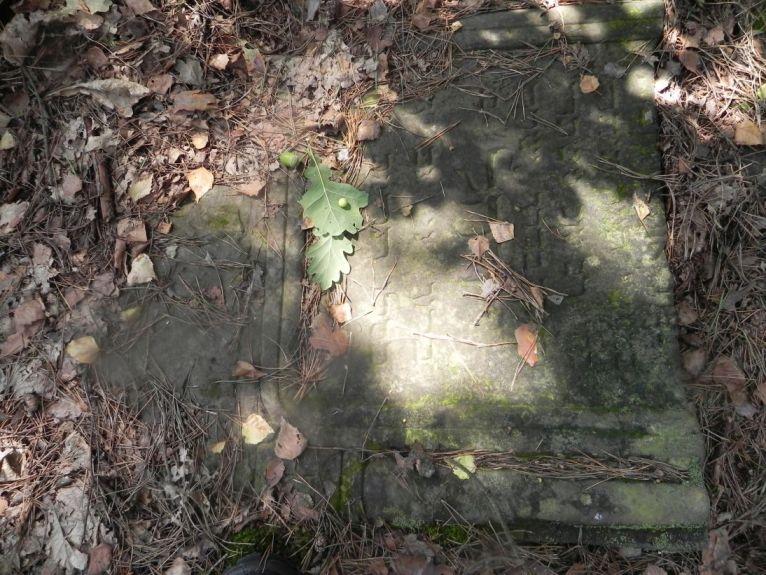 2011-08-07 Inowłódz - cmentarz żydowski (27)