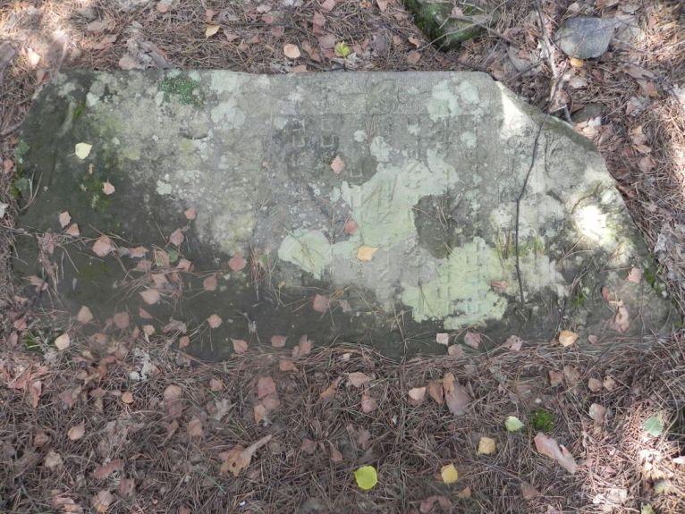 2011-08-07 Inowłódz - cmentarz żydowski (31)