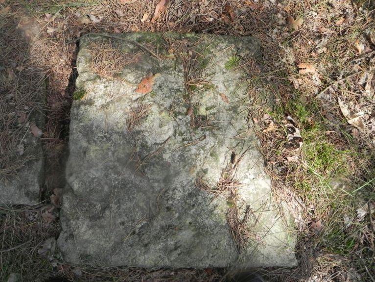 2011-08-07 Inowłódz - cmentarz żydowski (41)