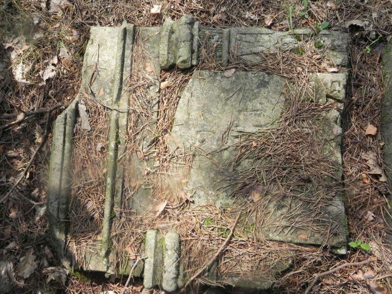 2011-08-07 Inowłódz - cmentarz żydowski (44)