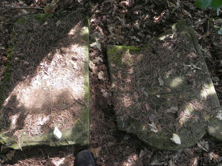 2011-08-07 Inowłódz - cmentarz żydowski (47)