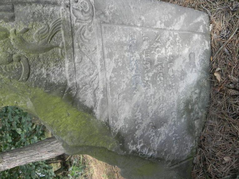 2011-08-07 Inowłódz - cmentarz żydowski (5)